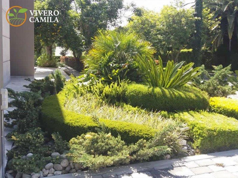 Diseño y Decoración de Áreas Verdes